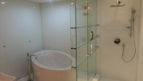Shower Glass Panel