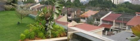 garden living glass